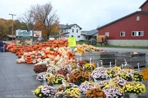 Hershbergers-Farm-Bakery