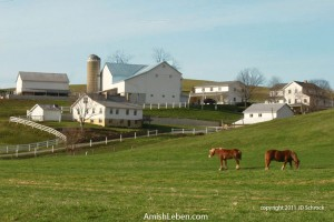 Farm-in-Ohio-Amish-Country