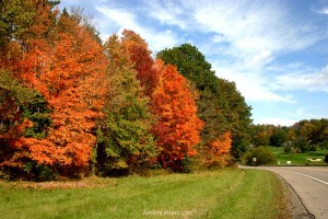 Ohio-Amish-Country-Fall-Foliage