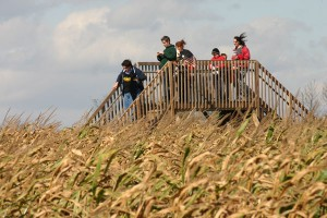 Corn-Maze-at-Sharp-Run-Market-Corn-Maze