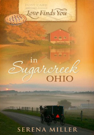 Book-Love-Finds-You-in-Sugarcreek-Ohio